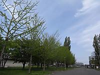 Dsc02022s