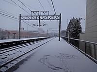 Dsc00386s
