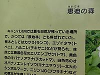 Dsc02015s
